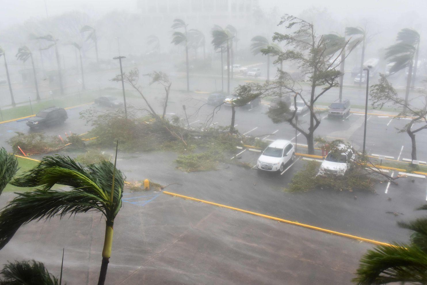 Hurricane Maria Puerto Rico Children Fundraiser
